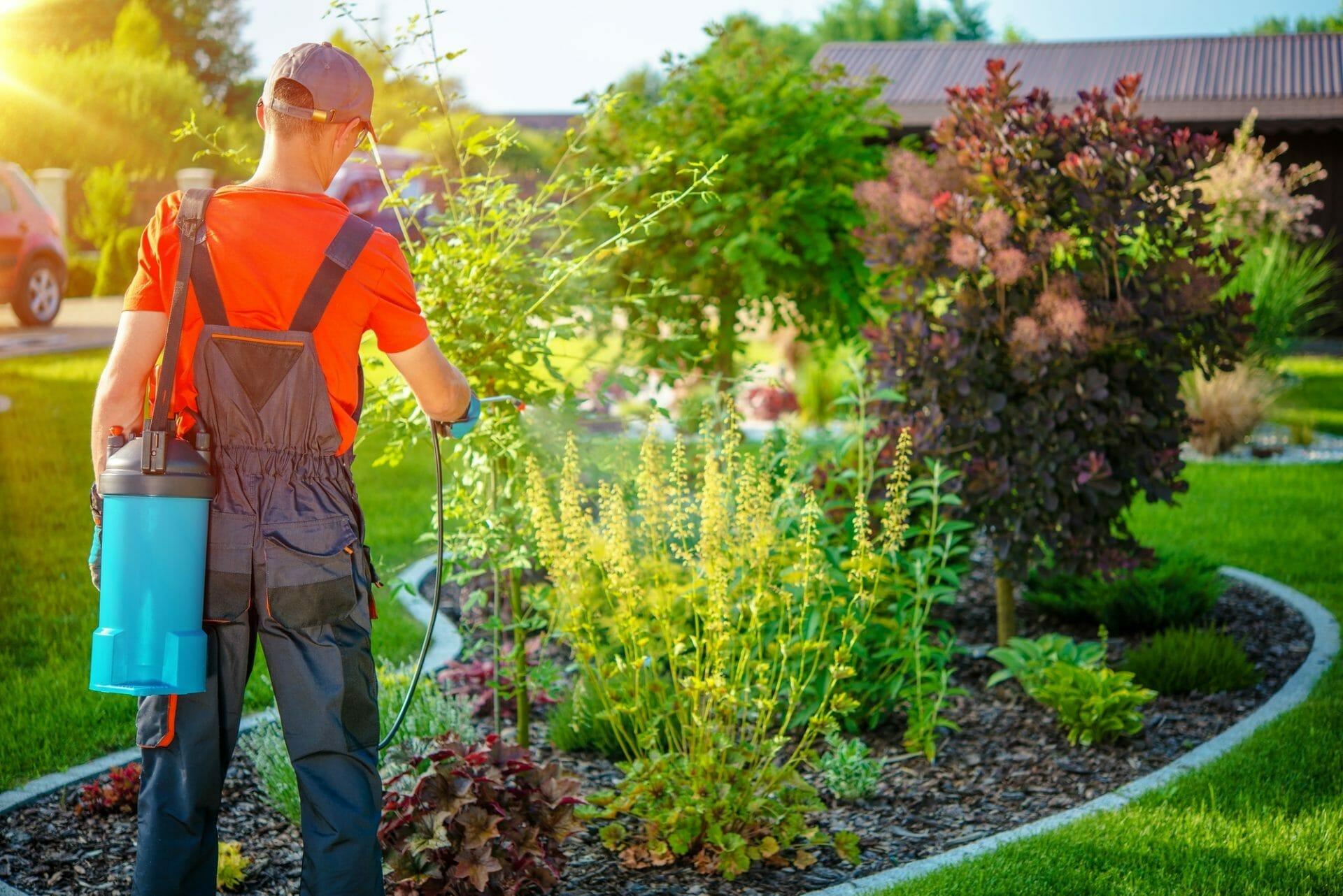 Guy doing Landscape Maintenance